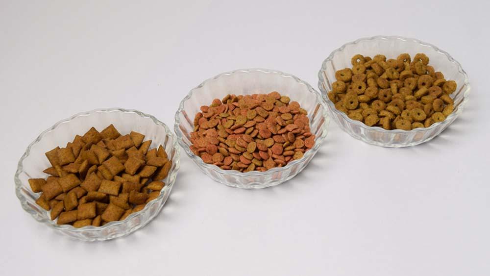 【ドッグフードの種類まとめ】愛犬に合わせた餌の基本的な選び方