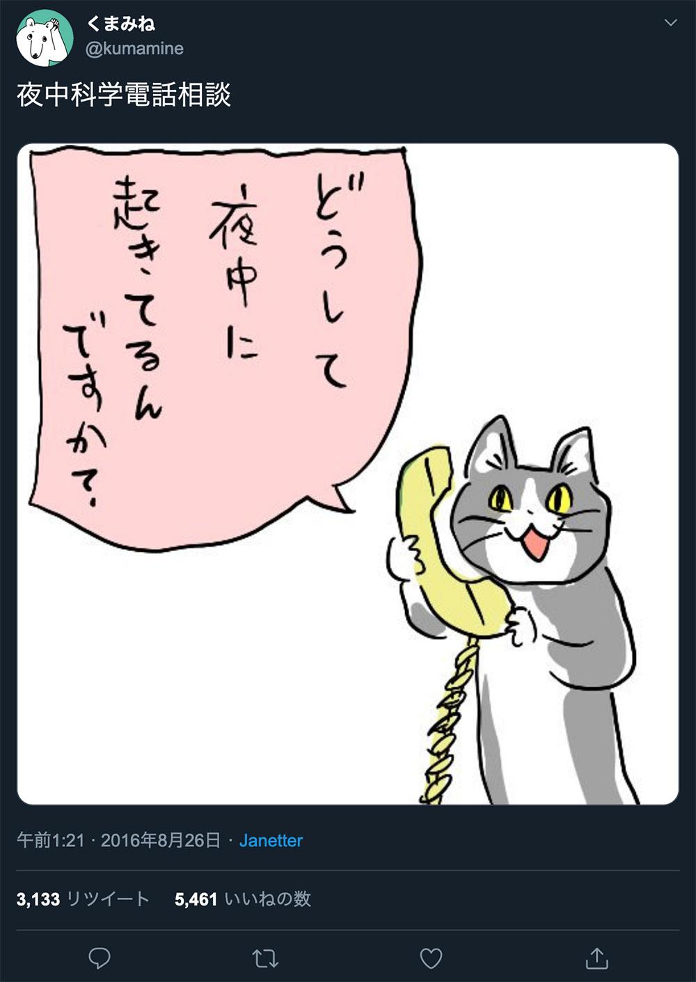 仕事猫 電話猫