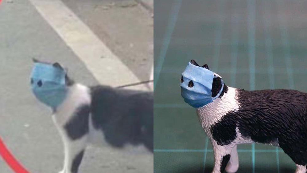 新型コロナウイルス流行の中で武漢でみつかったマスク猫がまさかの商品化!