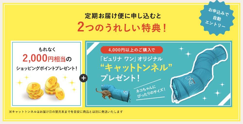 【特典1】定期お届け便だけのプレゼントキャンペーン!