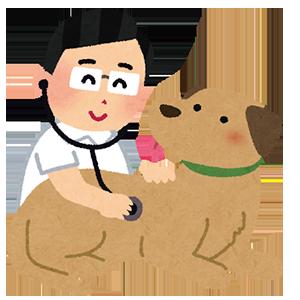 愛犬の病気を予防するには