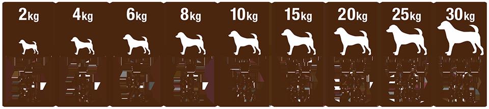成犬用ドッグフード参考給餌量表