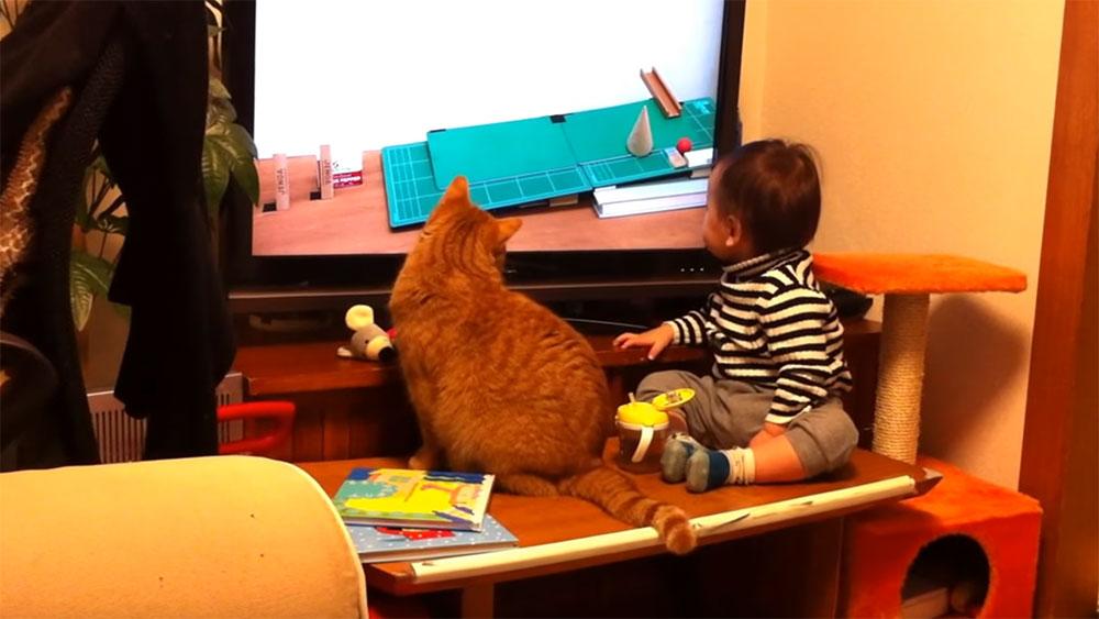 息ぴったりの猫と赤ちゃんの繋がりは、まさにピタゴラススイッチ